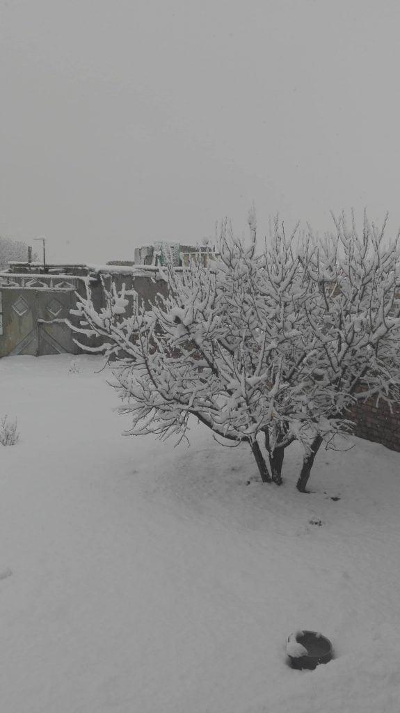 روز برفی نیسان شهرستان